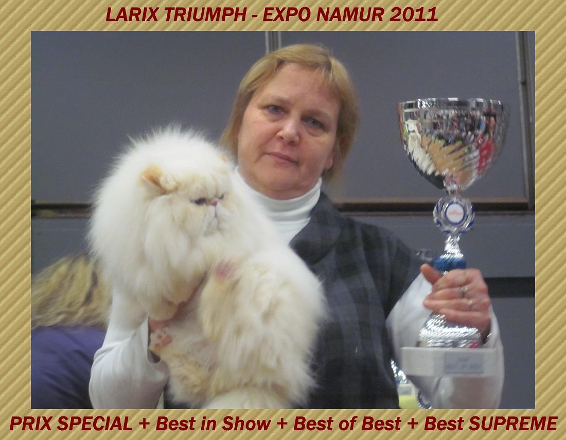 triumph2011